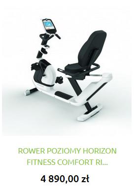 rowerpoziomNOWY.png