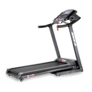 Maszyna na mięśnie bicepsów inSPORTline Body-Solid SBC-600G/2